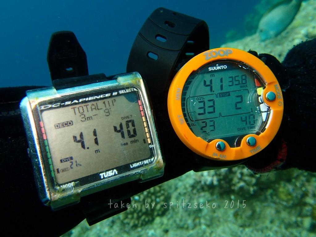 水深4.1Mで安全停止。空気潜水だとまだまだ水面には戻れません