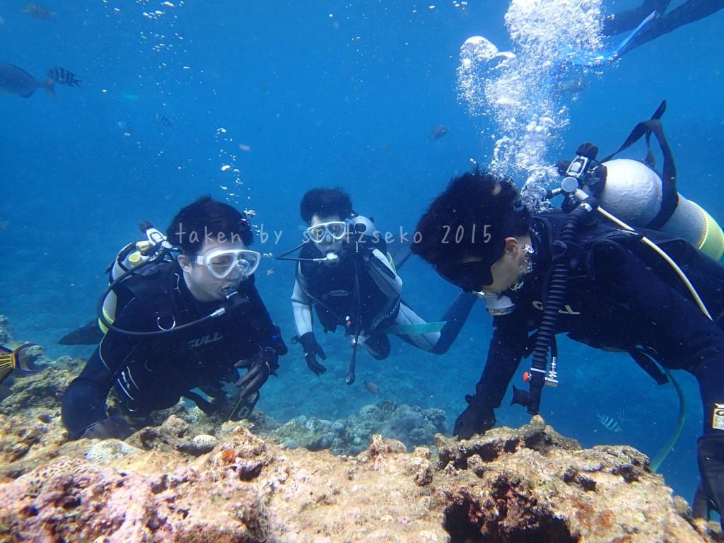 3兄弟体験ダイビング