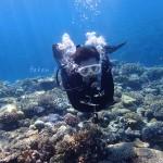 水納島のサンゴと一緒に