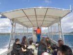 宜野座ボートの魅力、エキジット後の風よけ温室