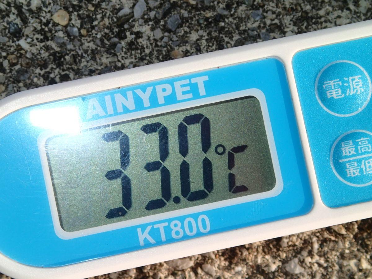 気温は33℃